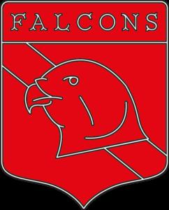 falcon-black-trim-colour